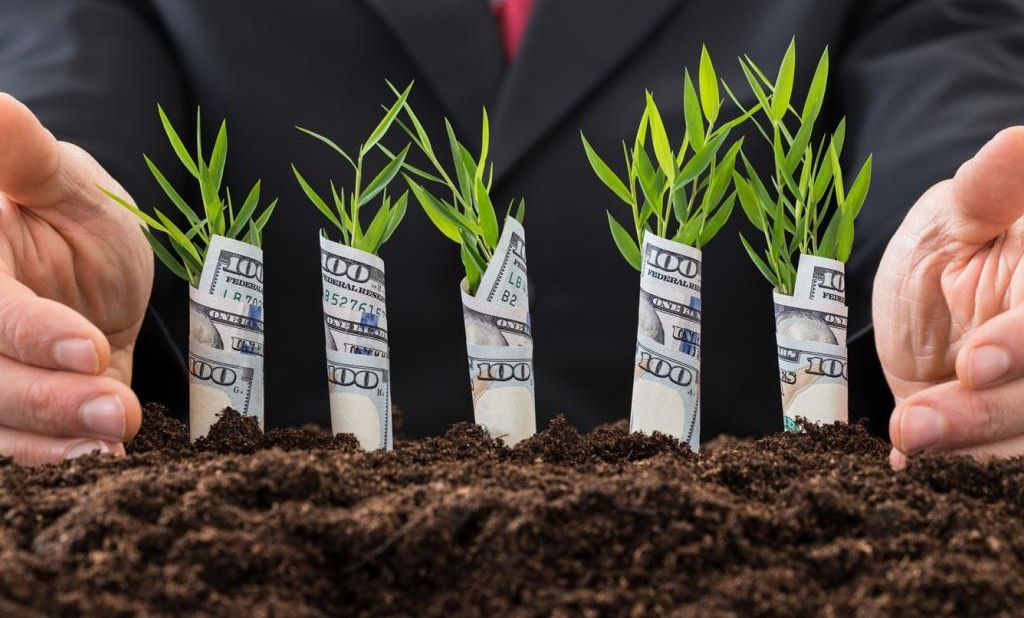 Посевные инвестиции
